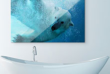 Bathroom example metal print with polar bear