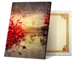 image photo on canvas and rear